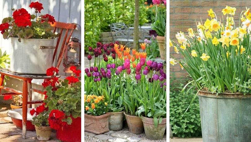 39 Δημιουργικές ιδέες ανοιξιάτικης διακόσμησης κήπου που θα λατρέψετε