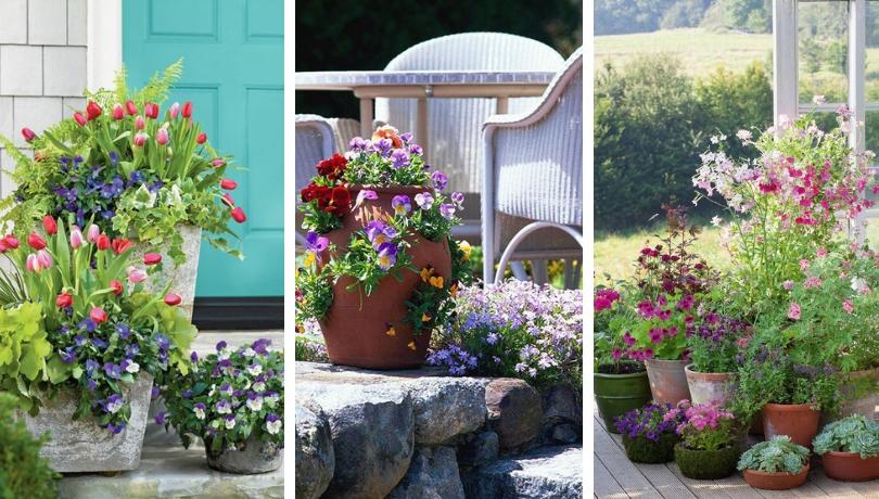 40 Όμορφοι κήποι λουλουδιών σε γλάστρες για την άνοιξη που μαγεύουν